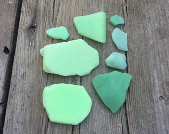 Sea Pottery Milk Glass Vibrant Green 8 Pieces