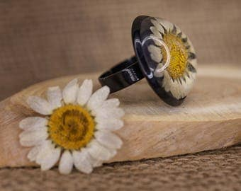Real Goose Flowers (daisy) in resin ring-adjustable