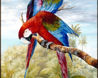 After the Storm - Print of Original Oil Painting - Tropical Parrot Scene