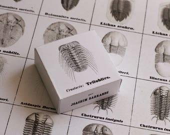 Memory game Systeme Silurien du Centre de la Boheme - vol. 1 - Trilobites - boxed version
