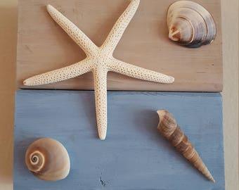 wall art, beach, seashells, wood, custom, shells, starfish, home decor