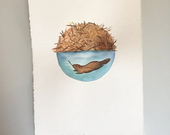 Original Watercolor - Full Beaver Moon