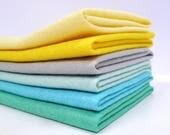 SUCCULENT Colours Felt Pack