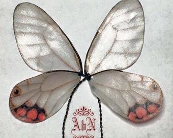 Fairy Wings -  Gray Butterfly wings 591A -  For OOAK Art Dolls