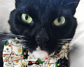 Maneki Neko Lucky Cat Print Bow Tie for Cats!