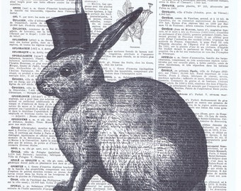 Art print.Rabbit,bunny,Top hat.repurpose book page,buy 3 get 1 free,paper,french, paris,animal,nature,affordable art.mom.bunnie.dad.nursery