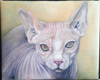 """Oil Painting Sphinx Cat Pet Portrait 8"""" x 10"""" READY to SHIP"""