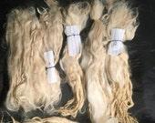 "1.9 oz off white cream 6""- 10"" raw/unwashed Suri Alpaca fiber locks doll hair spinning, felting"