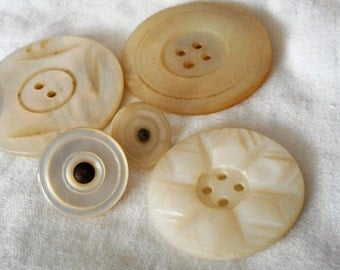 Lot of 5 VINTAGE Large Carved Shell Sew Thru & Small Colonial BUTTONS