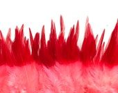VIVACE Ombre  SADDLE  / Red and Neon Cotton Candy PInk  /  V - 07