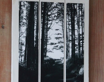 Tree Photo on Pallet Boards/ Art
