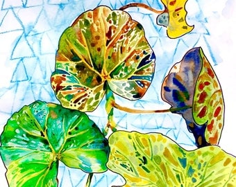 """Watercolor Painting, Still Life Painting, Green Leaves, Begonia 11""""x15"""""""