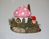 Fairy Garden or Terrarium Decoration - Toadstool Cottage with Miniature Gnome