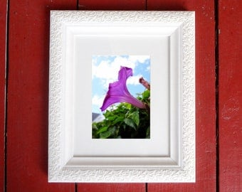 Photograph: Purple Flower Against a Blue Sky Nature Photo 5x7 Print