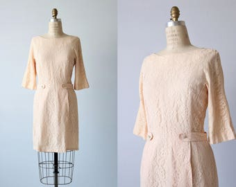 Pink Lace Sheath Dress / 1960s Vintage Dress /  Lace Dress / Formal Dress / Blushed