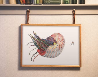 Nautilus -  Limited Edition Sea Life Fine Art Print