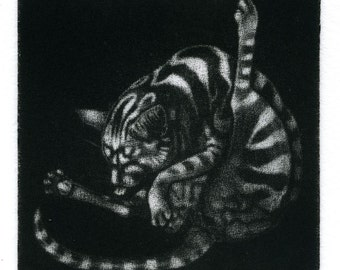 "Original mezzotint print - ""Stripy Cat Bottom"" - cat washing, Art print in black & white / monochrome. Art by Nancy Farmer"
