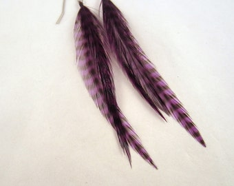 Feather Earrings Purple Grizzly