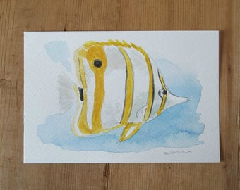 tropical fish watercolor painting postcard handpainted not a print