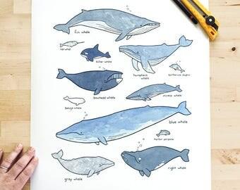 Large whales print 16x20, whimsical ocean art, nautical nursery