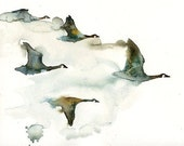 Canada geese flock birds -Watercolor-bird painting-Archival Print from my original watercolor painting 8x10 inch