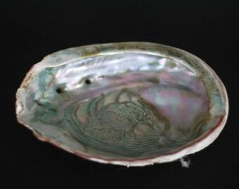 vintage abalone shell