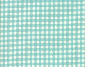 Howdy Gingham Aqua from Howdy Collection by Stacey Iest Hsu for Moda Fabrics