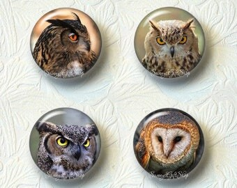 Owl Magnet Sets Choose from 4 Different Prints Buy 3 Sets Get 1 Set Free  551M