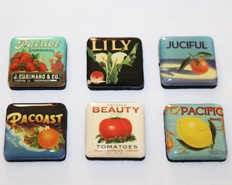 Set of Six Small Advertising Refrigerator Magnets - Fruit, Vegetables and Flowers  (1717-1)