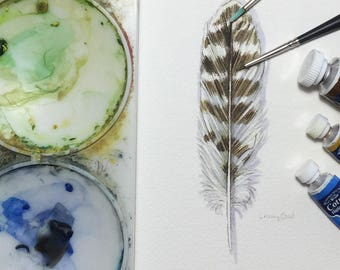 Snowy owl feather study - original watercolour