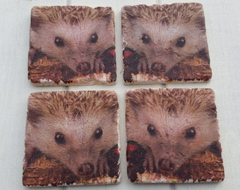 Hedgehog Stone Coaster Set of 4 Tea Coffee Beer Coasters