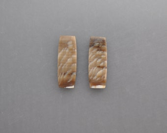 Petrified Wood Cabochon Pair