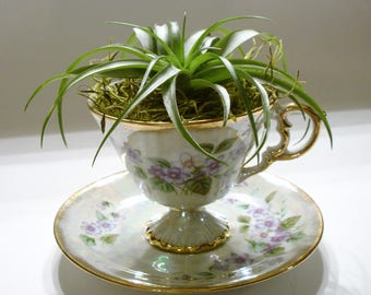 Air Plant Holder, Tea Cup Decor, Vintage Tea Cup Planter, Mother's Day gift, wedding shower gift, Violet Floral Tea Cup