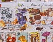 Mushroom Mania 50 Premium Postage Stamps Toadstools Fungus Horticulture Fungi Spore Mycology Morel Fungi Red Cap Woodland Topical Philately