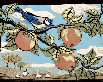 Linocut, bird, autumn, songbird, apple tree, apples, country side, sheep, blue sky, green fields, rain shower, printmaking