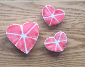 Grapefruit Heart Magnets
