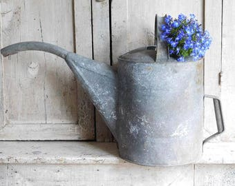 Vintage Galvanized Watering Can, Flower Garden Decor. Long Water Spout