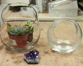 Private- Zen Gem Amethsy with succulent and moss