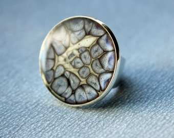 Pebeo Prisme and Resin Ring, Round shape