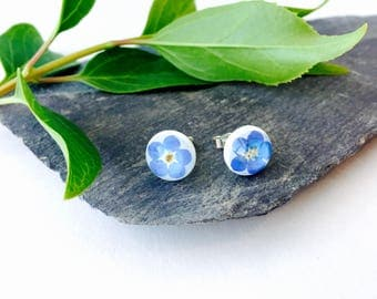 Forget Me Not Earrings - 925 Sterling Silver