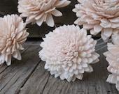 Custom Listing for Kate Sola Flower Samples