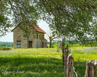 The bluebonnet House - fine art print, landscape photography, Texas, Hill Country, western, spring, flowers, bluebonnets, wall art