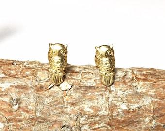 Adorable Tiny Golden Brass Owl Stud Earrings