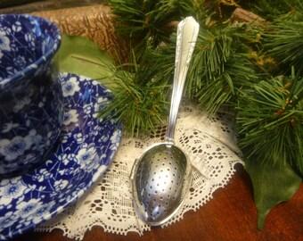 Italian Loose Tea Infuser Spoon,  Italian Teaette     (T)