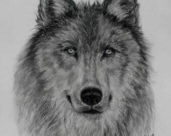 Mama Wolf Power Animal