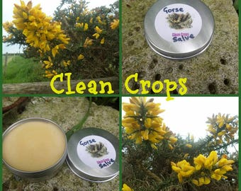 Large tin of natural gorse balm, 55mm x 25mm