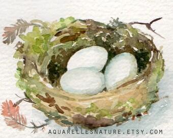 Nest Aceo, Original watercolour painting