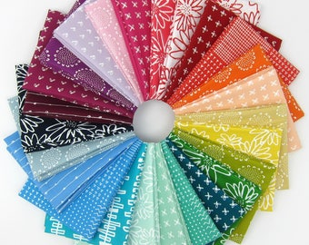 Blueberry Park Rainbow Fat Quarter Bundle - Karen Lewis Textiles - Robert Kaufman - 25 Fat Quarters