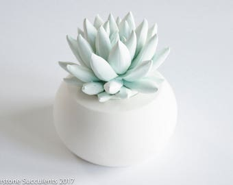 Pastel Succulent Sculpture Faux Plant Art Object Indoor Planter Plant Tabletop Desktop Accessory Modern Minimalist Home Office Decor
