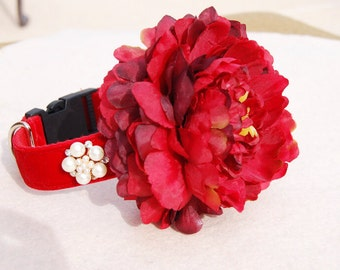 Beautiful  dog collar!Cute gift for dog ,red panne velvet collar.dog Christmas collar,Very cute gift for dog